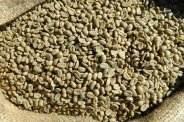 Cappuccino-vs-Latte-vs-Macchiato-vs-Mocha